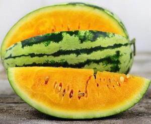 orangeglo-watermelon